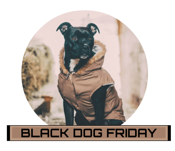 Black Dog Friday
