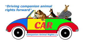 Companion Animal Rights
