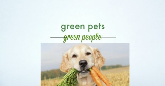 25 green plants to grow in your garden friendly to your pet