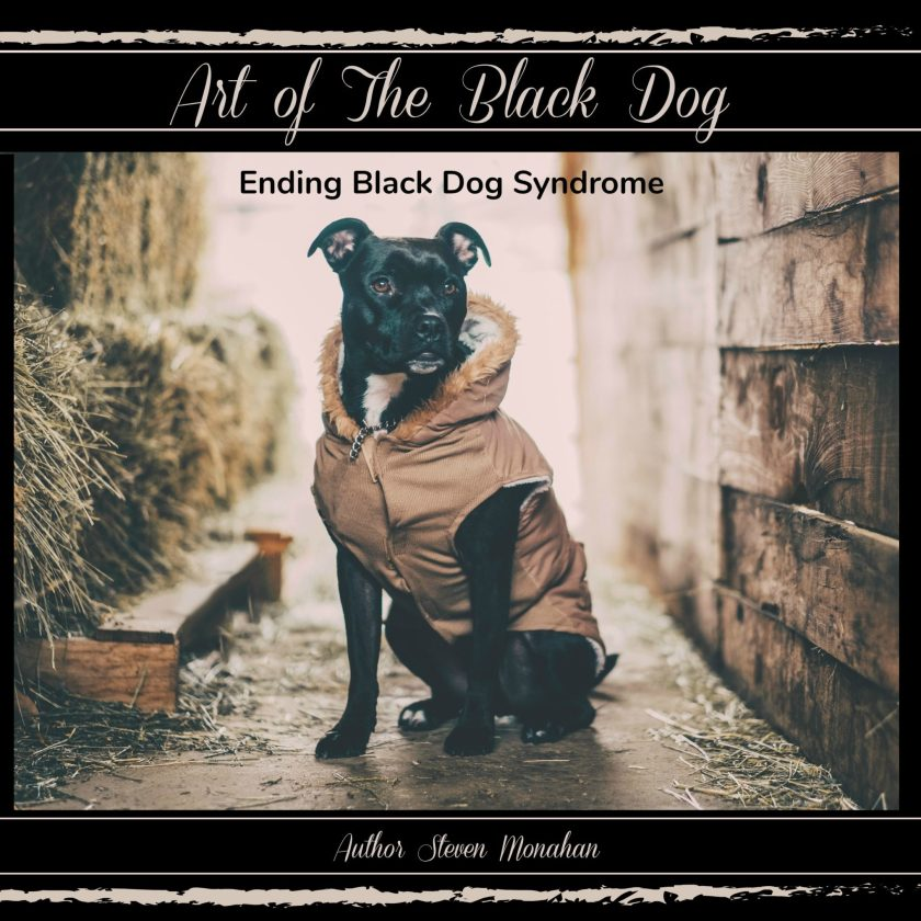 ART OF THE BLACK DOG book