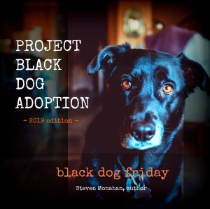 project black dog adoption