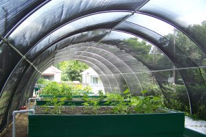 Healthy Growing System under a simple hoophouse