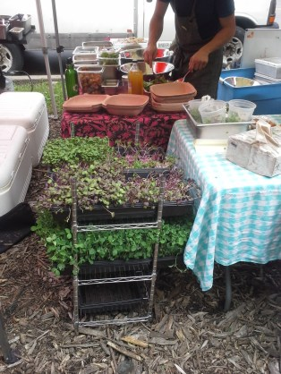 One microgreens stall, using them in salads that I *think* were in the $10 range