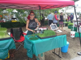 Here is your microgreens tent. Wheat grass drinks offered