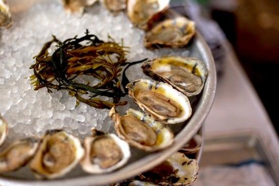 Oysters_Taste_Williamsburg_Greenpoint_Rosie_de_Belgeonne