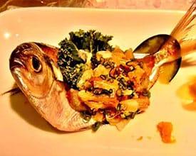 fish_275px