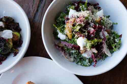 Roebling Tea Room - Food - Chicory and Radiccho Salad - By Andrew Gosselin