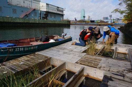 The Newtown Creek Living Dock