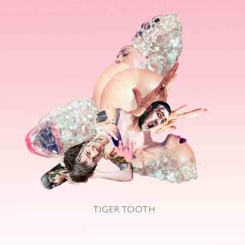 Tiger Tooth album artwork by Sofia Szamosi