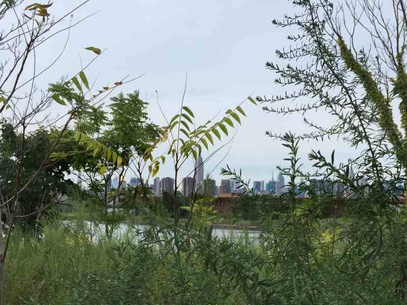 View of Manhattan from Bushwick Inlet Park - Photo by Megan Penmann