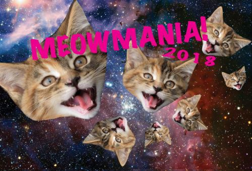 Meowmania 2018