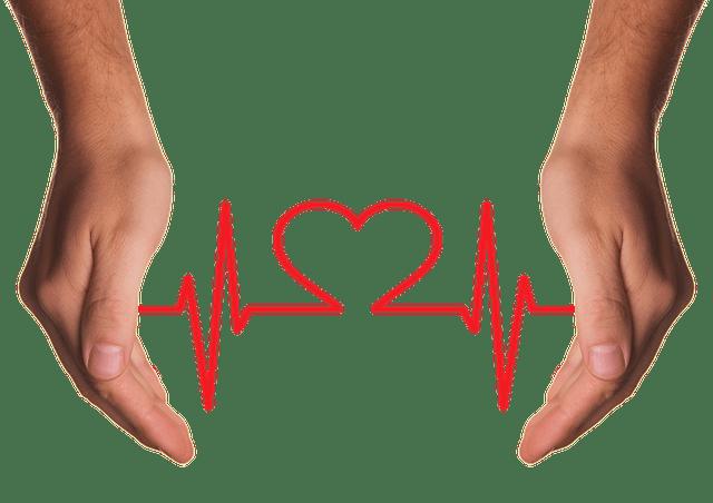 Hands Holding Heart EKG