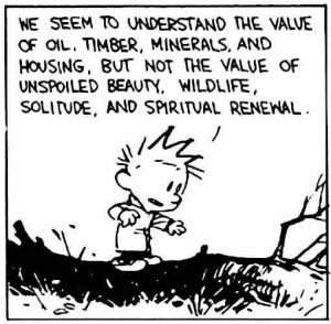 We seem to understand the value of oil, timber, minerals, and housing, but not the value of unspoiled beauty, wildlife, solitude, and spiritual renewal.