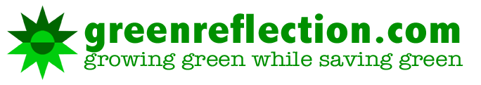greenreflection.com