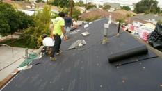 roofers-green-roof-designs