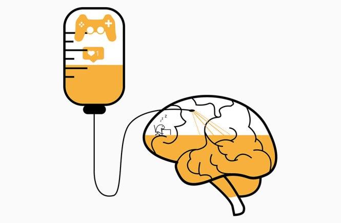 hersenen dopamine gamen