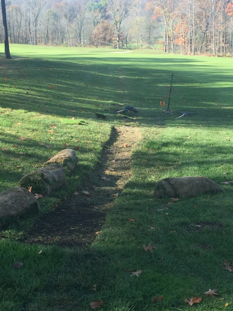 Sod Replacement Right 5 approach