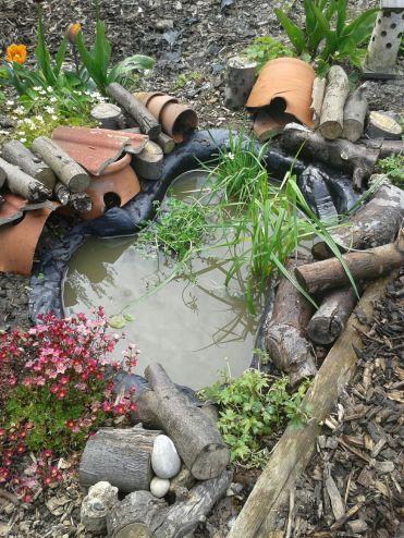 Pond May