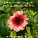 3 Ways to (Re)Invigorate Your Environmental Mojo