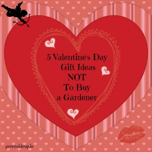 5 Valentine's Day Gift Ideas not to buy a gardener