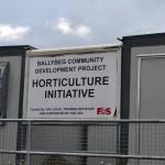 Ballybeg CDP (3)