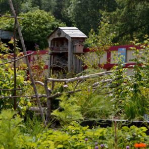 Greenside Up Social & Therapeutic Horticulture
