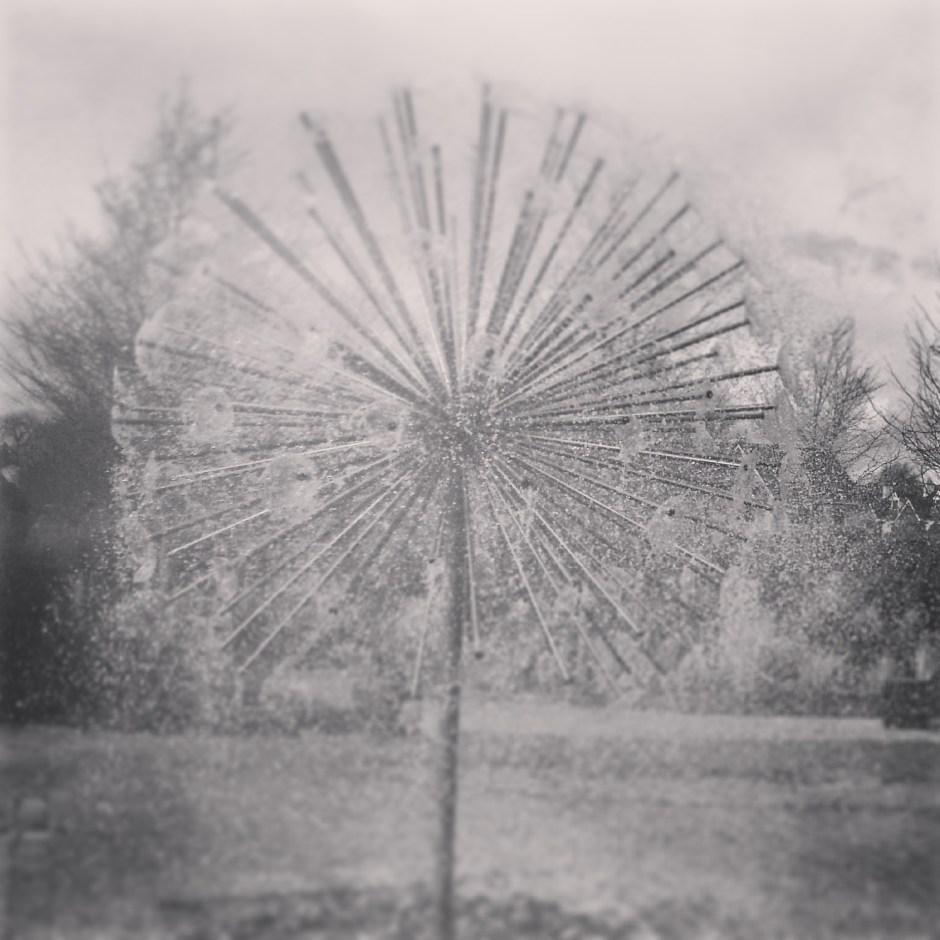 Dandelion Clock Water Feature