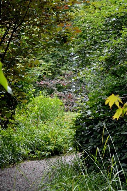 Newtownbarry Gardens - Secret Pathway