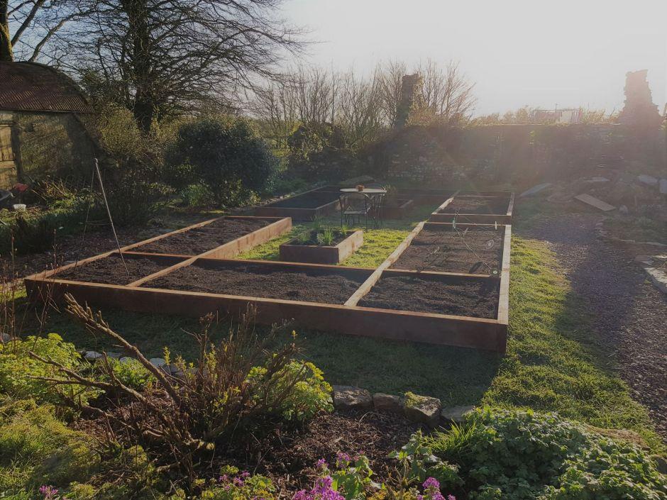 3 Essentials to Help you Start in the Vegetable Garden