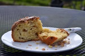 Rhubarb Crumble Cake Crumbs