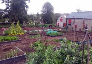 clonegal community garden