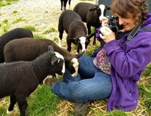 How to make a Zwartbles Sheep Egg Cozy