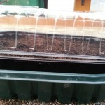 recycled propagator