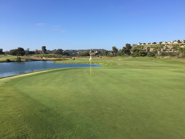 Omni La Costa Spa & Resort  CHAMPIONS Carlsbad California Hole 11 Green-side