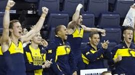 Mich Men's Gymnasts