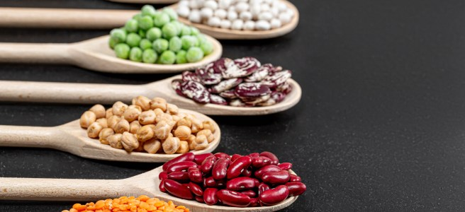 Why are legumes banned by the Paleo Diet? The image shows six types of legumes in wooden spoons, against a black background.