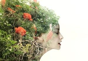 Экологическое сознание и что нужно знать про экопсихологию