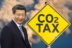 Китай - ударить облесением по европейскому пограничному налогу на выбросы углерода
