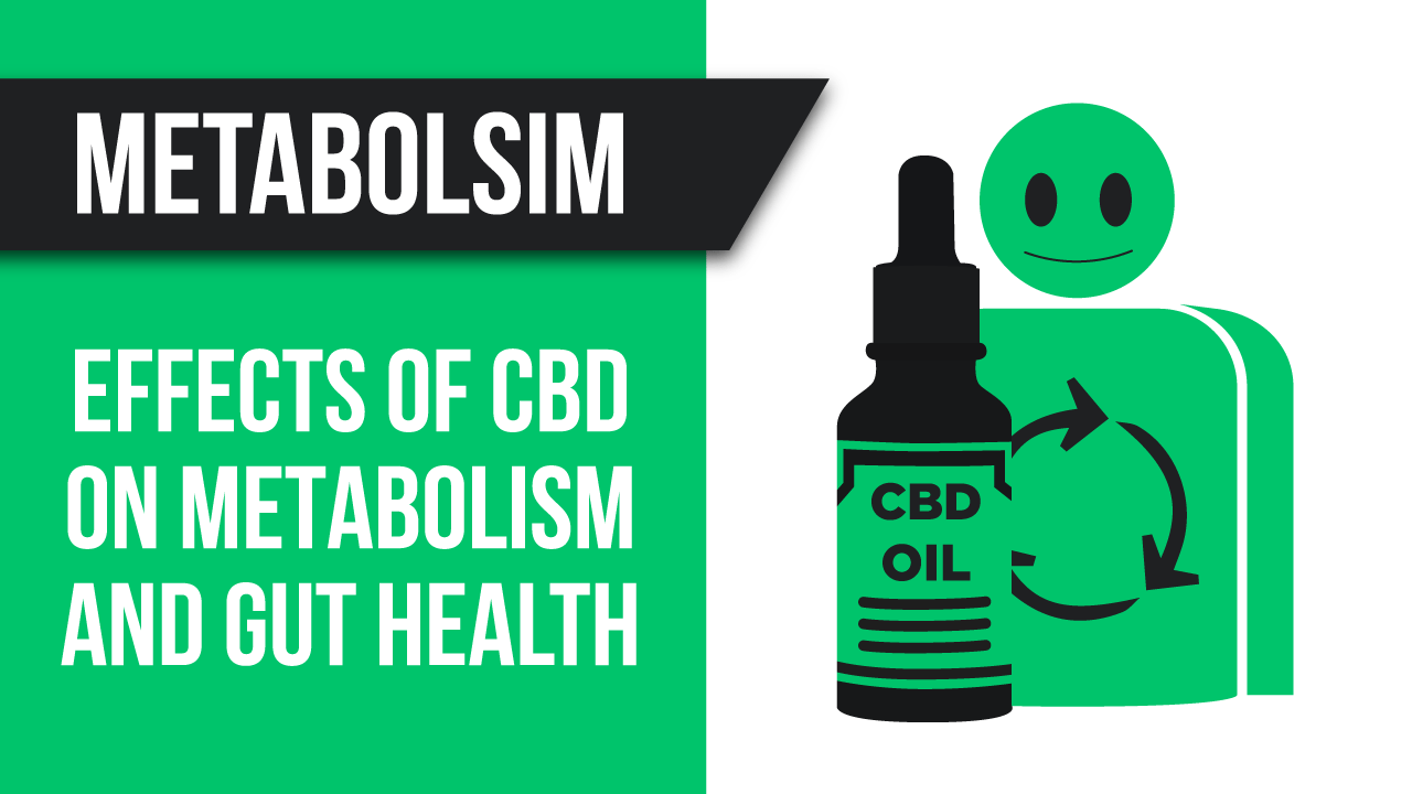 How does CBD effect Metabolism