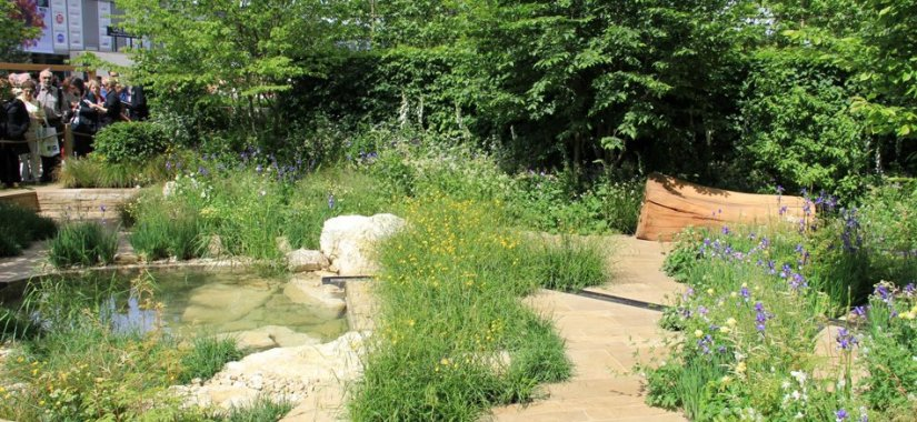 Create a Natural Looking Garden with These Fantastic Ideas