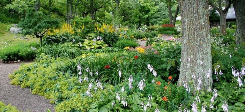 What Your Garden Says About You