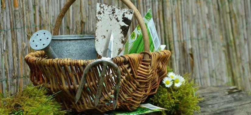 Creating a respectful garden