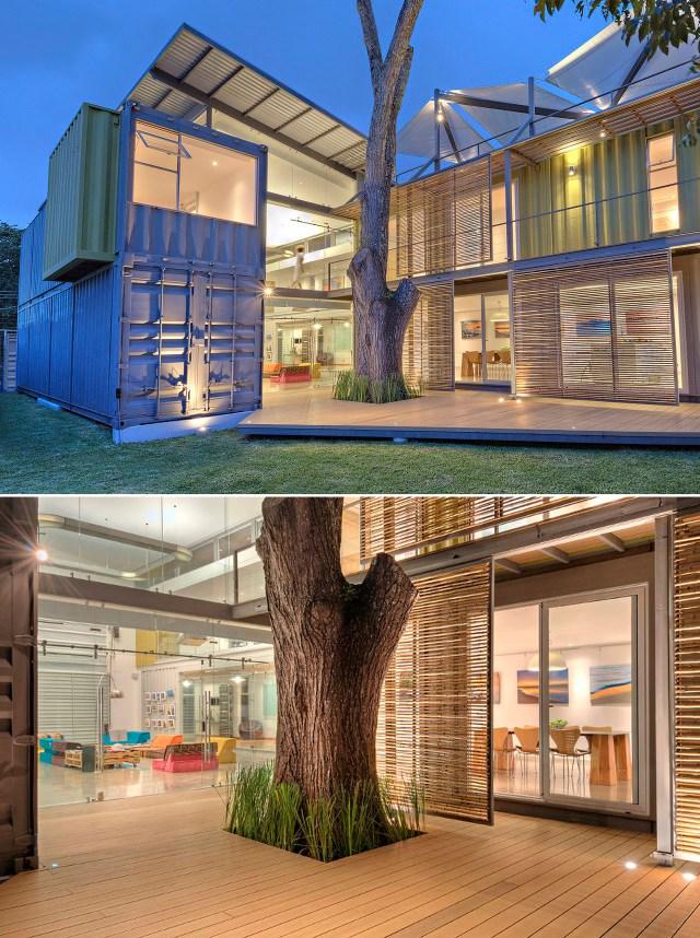 A Casa Incubo e seu cedro. (Fonte: Home World Design).