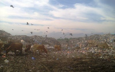 Municipal Solid Waste Management Is a Big Issue in Assam
