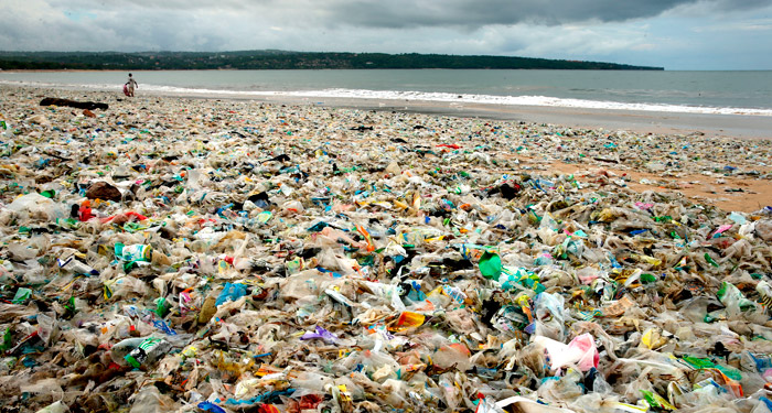 Plastic Pollution Essay: 7 Steps to Reduce Our Plastic Footprint