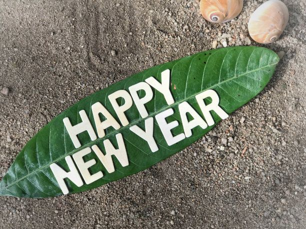 Happy New Year 2019 to all Greenubuntu Readers: Let Us Go Green!