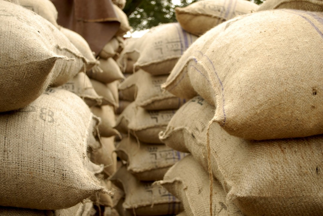 Cocoa sacks for export