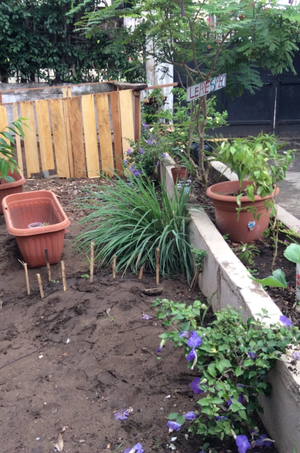 Greenwayofliving urbangardening scenery 7: recycling to define the home I want