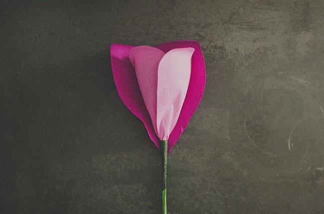 DIY-gigante-papel-rosa-12