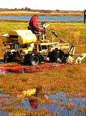 2ack cranberry tractor